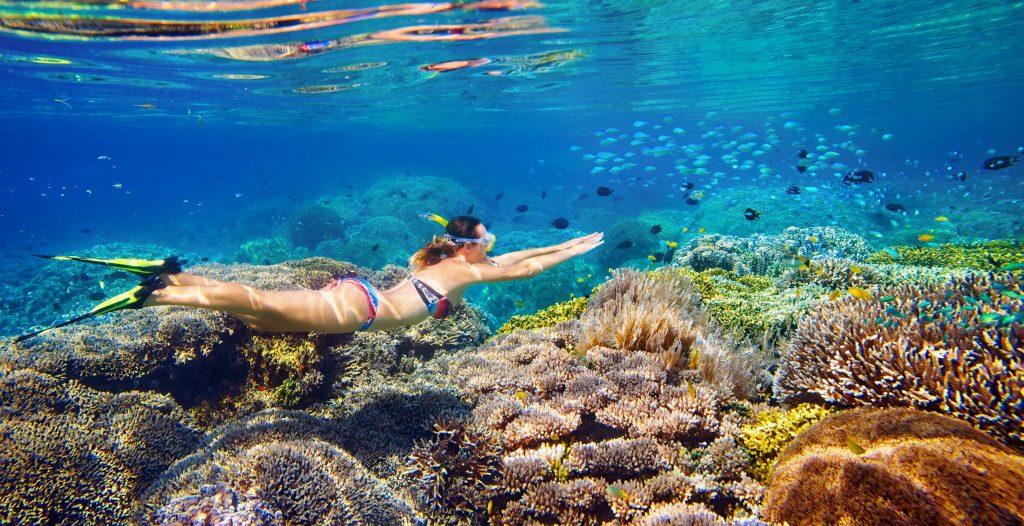 NASSAU Bahamas, snorkeling tour