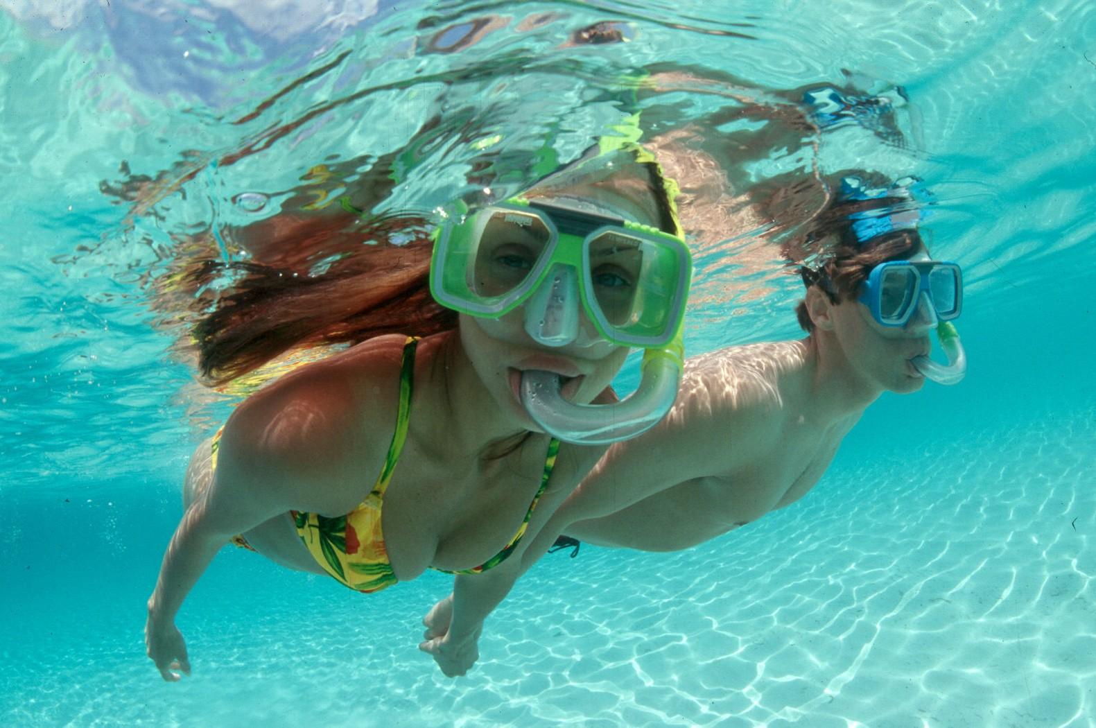 Sail and Snorkel Tour Seahorse Bahamas