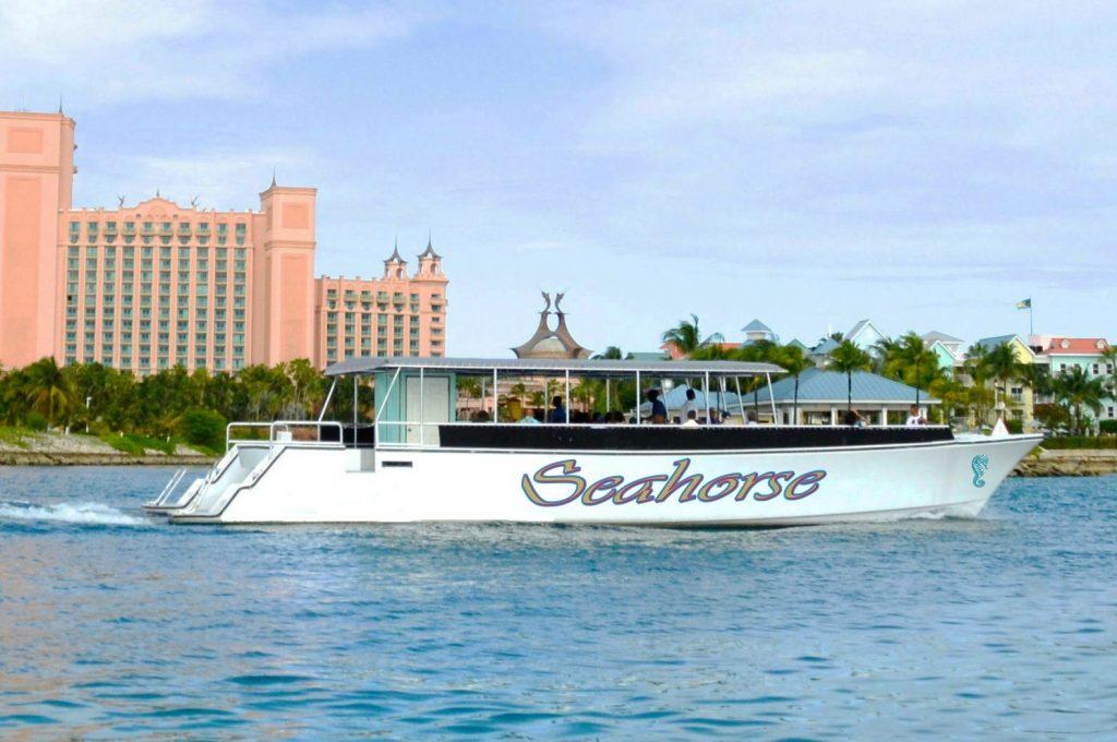 Seahorse harbor sailing cruise